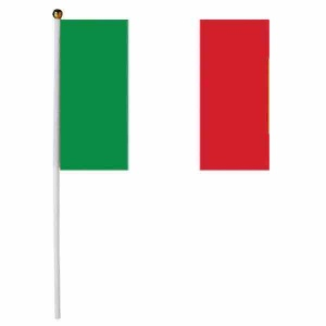 Medium Italian Flag on pole