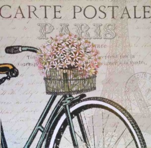 White framed Paris bicycle  picture