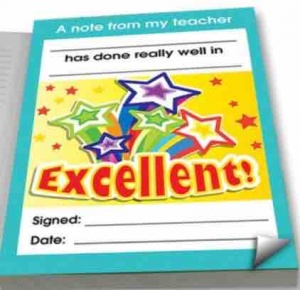 Excellent praise notepad