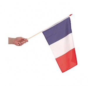 French flag on a pole